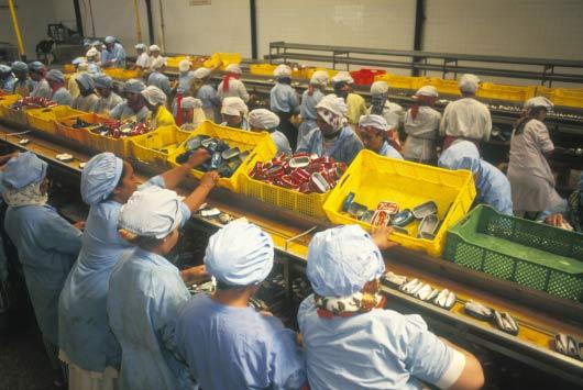 FAO: US$ 750 bilhões em alimentos desperdiçados no mundo por ano