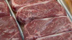Rússia volta a importar carne bovina do Mato Grosso do Sul