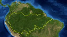 Religião ambientalista tomou lugar do comunismo, diz geólogo