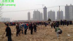 Camponeses desafiam urbanização frenética na China