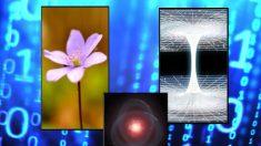 Nossa vida é incrivelmente semelhante ao Matrix, explica renomado engenheiro