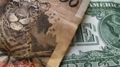 Banco Central precisa ter concorrência, diz economista