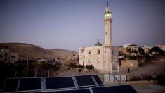 Subsídio para termelétricas, fixado pela Aneel, é o triplo da energia solar