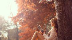 Entenda as mudanças que chegam com Outono