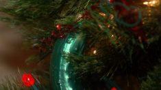 Se você vir um picles numa árvore de Natal, eis o significado