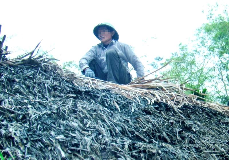 Como forma de complementar sua renda, Nguyen Van Bai decidiu produzir e processar chá preto para exportação (NTDTV)