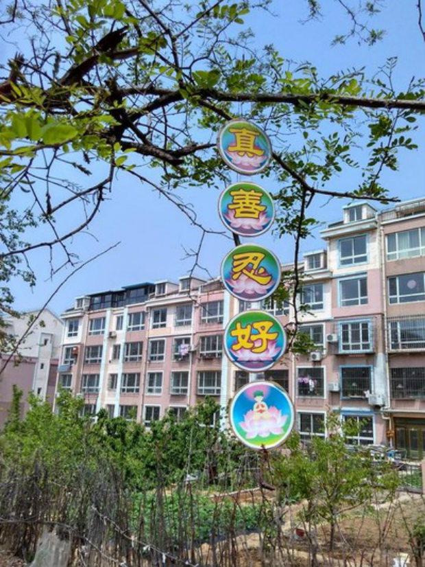 """Bandeira colocada na cidade de Dalian, província de Liaoning, diz: """"Verdade-Compaixão-Tolerância é bom"""" (Minghui.org)"""