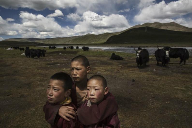 Jovens monges tibetanos em 14 de julho de 2015, no platô tibetano do condado de Madou em Qinghai, na China (Kevin Frayer/Getty Images)