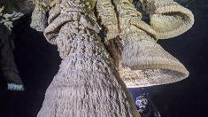 """Descobertos """"Sinos do submundo"""" no Cenote Maia de Zapote, no México"""