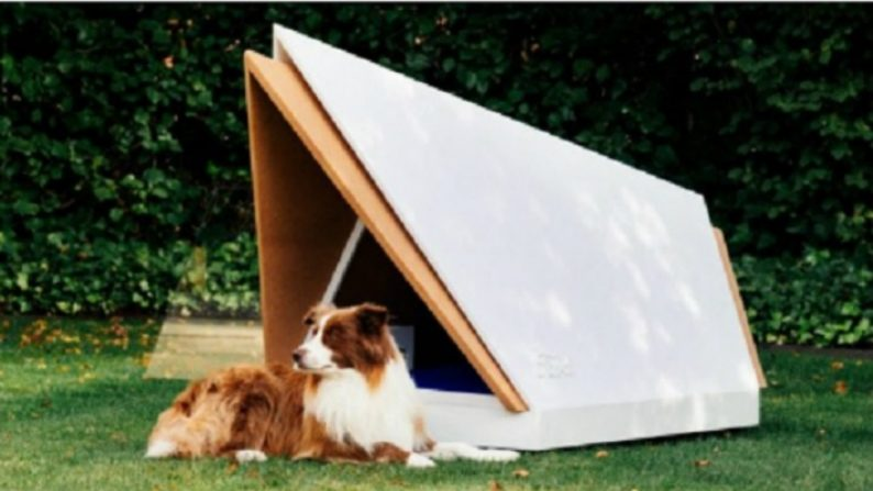 Casa para cães anti-stress isola completamente o som dos fogos de artifício (Vídeo)
