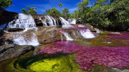 """Colômbia: """"rio mais bonito do mundo"""" fechado ao público devido à seca"""