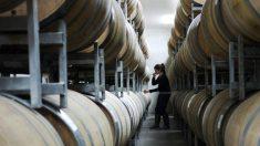 Professor culpa falsificações chinesas por perda de US$ 3,1 trilhões na indústria global de vinhos