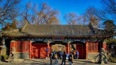"""Professor da Universidade de Pequim pede que Partido Comunista Chinês """"desapareça da história"""""""