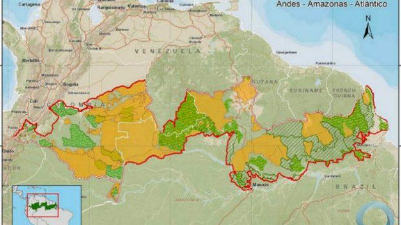 Corredor Triplo A: a nova ameaça à soberania brasileira na Amazônia