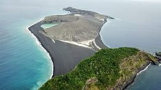Vida coloniza ilha misteriosa que apareceu no Oceano Pacífico em 2014