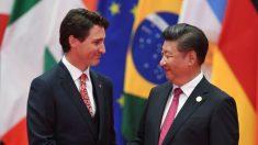 """""""Claws of the Panda"""", livro expõe influência da China no Canadá"""