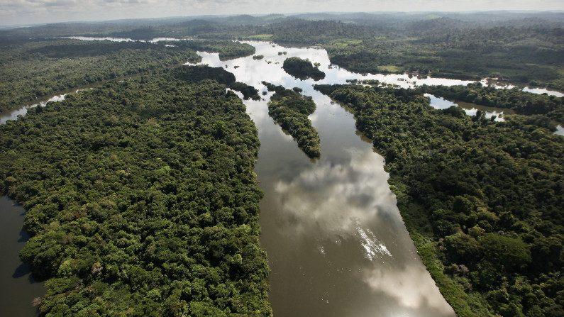 Com chuvas dentro da normalidade, a Amazônia 'apagou', sumiu do noticiário