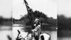 Cocar do século passado encontrado em brechó é devolvido à tribo Blackfoot