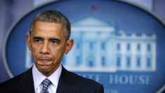 Presos de Guantánamo libertados por Obama ocupam cargos no governo Talibã