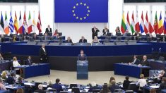 """Chefe europeu critica """"nacionalistas estúpidos"""" antes de eleições parlamentares"""