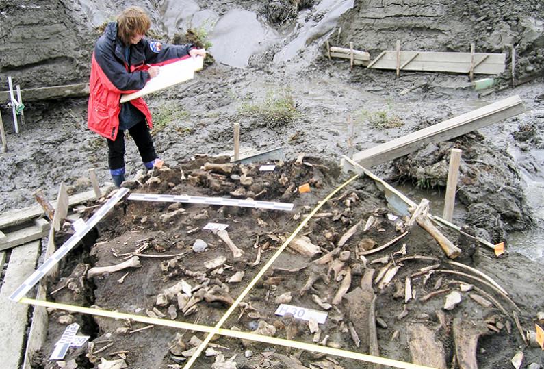 """Sítio arqueológico """"Yana Rhinoceros Horn (SHR) (Elena Pavlova no St. John's College da Universidade de Cambridge, publicado em 5 de junho de 2019)"""