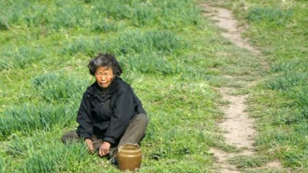 Fome na Coreia do Norte (Vídeo)