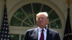 Trump confirma que operações para deportar imigrantes começarão no domingo