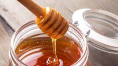 Importações de mel falsos para o Canadá acionam investigação imediata do CFIA