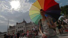 Coca Cola retira propagandas criticadas por homofóbicos na Hungria
