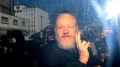 Mais de cem médicos pedem que Julian Assange receba atendimento médico urgente