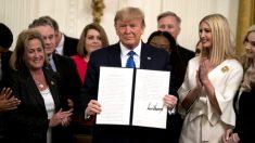 Trump cria nova posição dedicada ao combate ao tráfico humano