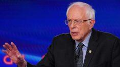 Sanders suspende campanha presidencial de 2020