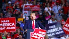 """""""Eleições não terminaram"""", diz campanha de Trump"""