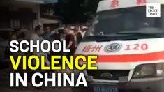 Guarda de escola primária fere 40 ao atacar funcionários e alunos