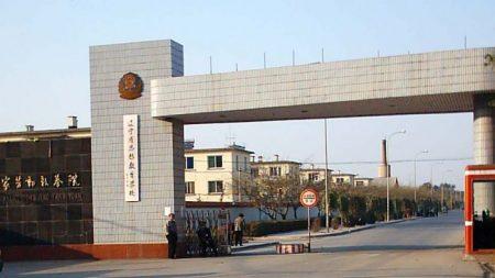 Empresas chinesas na lista negra estão envolvidas em trabalho forçado e vigilância genética