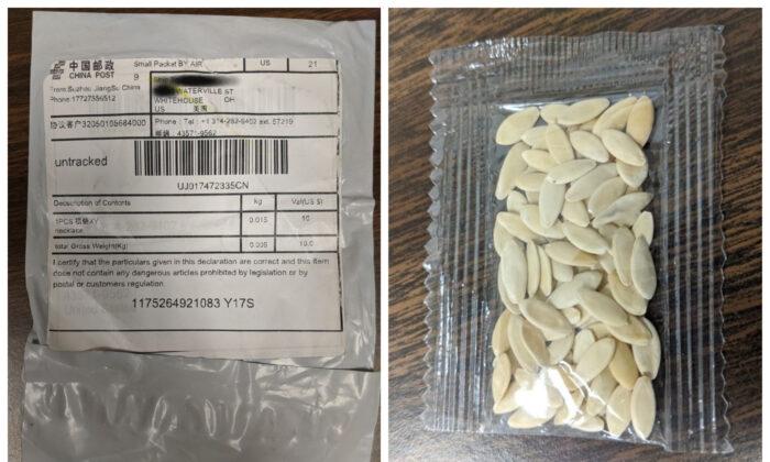 Todos os 50 estados dos EUA alertam sobre pacotes de sementes não solicitados que parecem ser da China