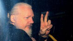 Julgamento de Assange é adiado para segunda-feira devido a possível caso de COVID-19
