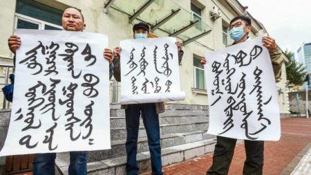 Dezenas de milhares assinam petição da Mongólia Interior contra a pressão de Pequim para erradicar sua língua