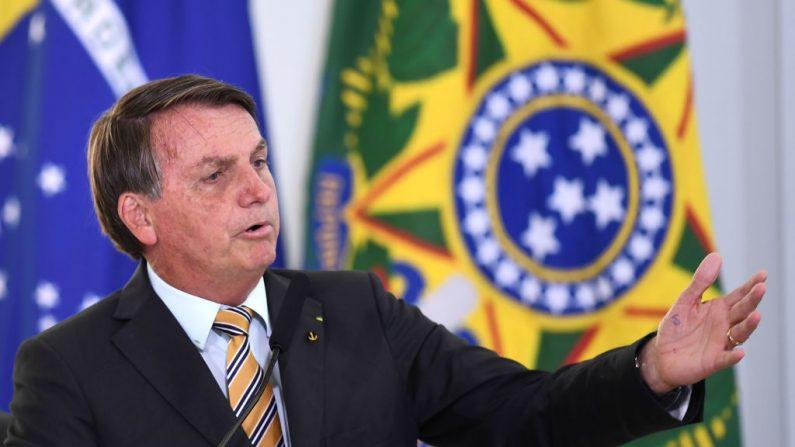 Presidente Bolsonaro sai em defesa de Nise Yamaguchi e diz 'Humilhada por um PhD em corrupção'