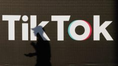 Dinheiro chinês, por meio do TikTok, financia o verificador de fatos do Facebook