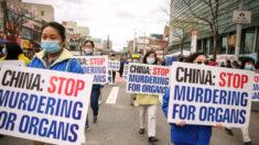 Médico do Texas se pronuncia contra a extração forçada de órgãos na China