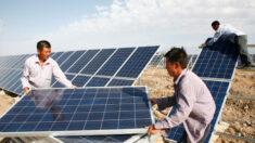 EUA proíbem importação de materiais de energia solar de empresas chinesas com trabalhos forçados