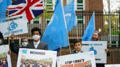 Legisladores internacionais pedem que ONU investigue genocídio uigur