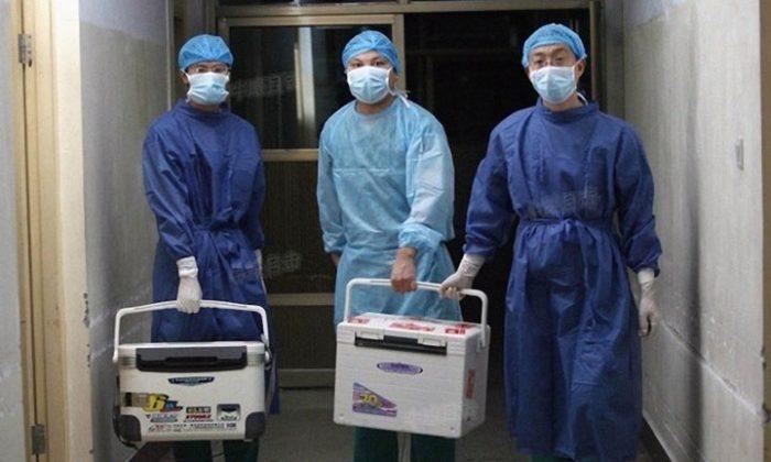 A verdade trágica sobre a coleta de órgãos na China