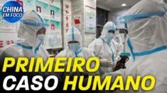 Cepa rara de gripe aviária infecta um humano pela primeira vez