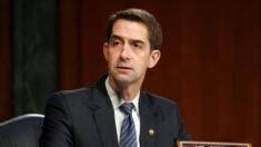 Senadores do Partido Republicano pedem aumento dos controles de exportação para conter 'depredação econômica da China'