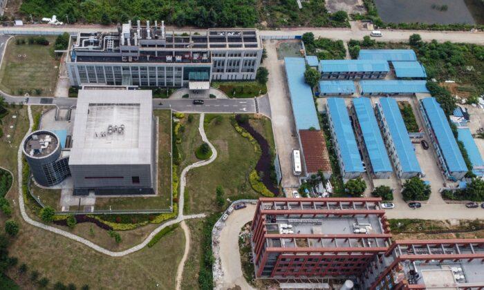 Grupo bipartidário pede 'revisão abrangente' do financiamento dos EUA para pesquisa de vírus na China