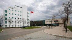Exclusivo: amostras dos primeiros pacientes com COVID de Wuhan tiveram Henipah geneticamente modificado, um dos dois tipos de vírus enviados do laboratório canadense