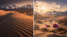 Fotografias surreais de deserto siberiano delimitado por montanhas, lagos e florestas cobertas de gelo