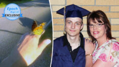 """Borboleta visita mãe enlutada após a morte do filho: """"Eu absolutamente senti que era um sinal de Deus"""""""